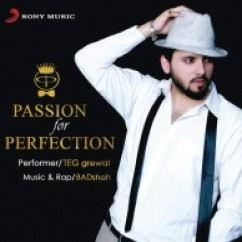 *Passion For Perfection-(Teg Grewal) song download by