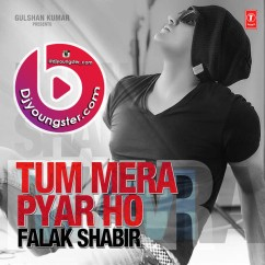 *Tum Mera Pyar Ho-(Falak Shabir) song download by