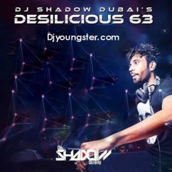 *Desilicious-(DJ Shadow Remix Songs) song download by