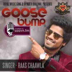 Goose Bump feat. Apekhsha Dandekar-Raas Chaawla song download by Raas Chaawla