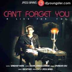 Cant Forget You song download by Sandeep Khan