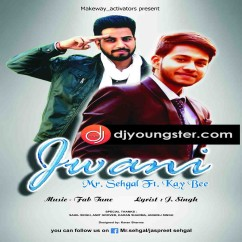 Jwani song download by Mr Sehgal
