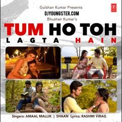 Tum Ho Toh Lagta hai song download by Shaan
