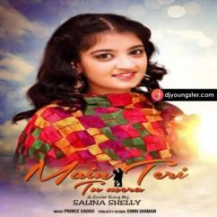 Main Teri Tu Mera-Salina Shelly(Cover) mp3