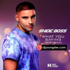 What You Saying song download by Shide Boss