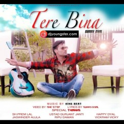 Tere Bina song download by Sunny Dyal