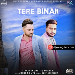 Tere Bina-Monty-Waris mp3
