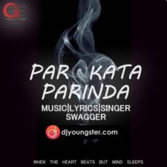 Par Kara Parinda song download by Swagger
