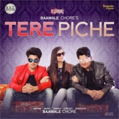 Tere Piche song download by Baawale Chore