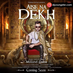 Aise Na Dekh song download by Millind Gaba