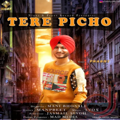Tere Picho song download by Prabhy