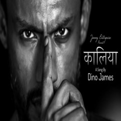 Kaalia song download by Dino James