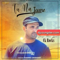 Tu Na Jaane song download by CK Rocks