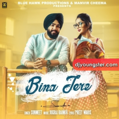 Bina Tere song download by Sunmeet