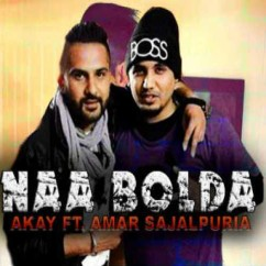 Naa Bolda song download by AKay
