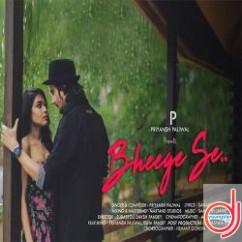 Bheege Se song download by Priyansh Paliwal
