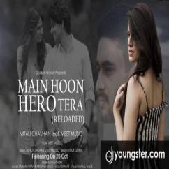 Main Hoon Hero Tera (Cover) song download by Mitali Chauhan