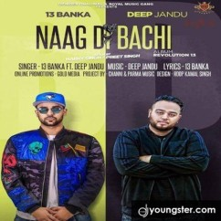 Naag Di Bachi song download by Banka