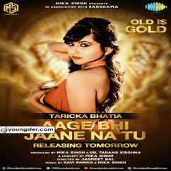 Aage Bhi Jaane Na Tu song download by Taricka N Bhatia