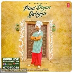 Pind Diyan Galiyan song download by Bai Amarjeet