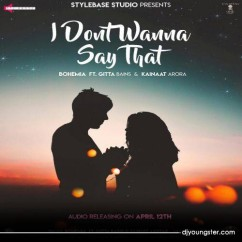 I Dont Wanna Say That song download by Bohemia