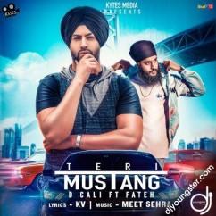 Teri Mustang song download by D Cali,Fateh