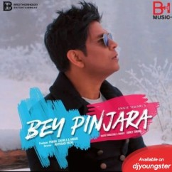 Bey Pinjara song download by Ankit Tiwari