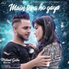 Main Tera Ho Gaya song download by Millind Gaba