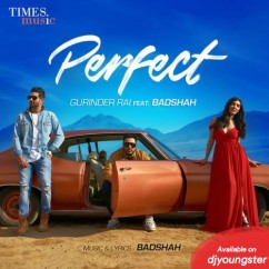 Perfect song download by Gurinder Rai