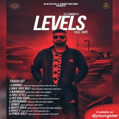 Levels song download by Elly Mangat