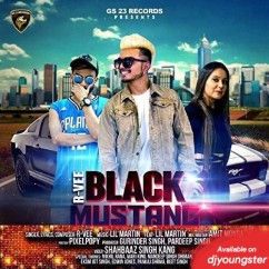 Black Mustang song download by R Vee
