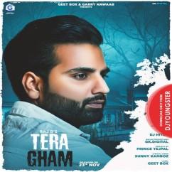 Tera Gham song download by Raj B