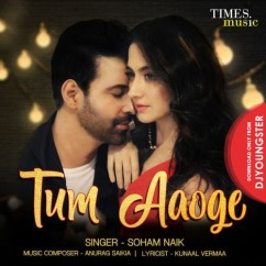 Tum Aaoge song download by Soham Naik