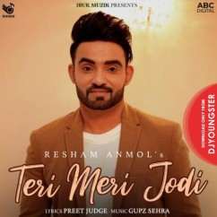 Teri Meri Jodi song download by Resham Anmol