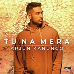 Tu Na Mera song download by Arjun Kanungo