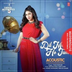 Dil Mein Ho Tum Acoustics song download by Tulsi Kumar