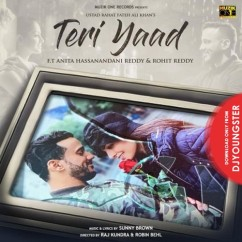 Teri Yaad song download by Rahat Fateh Ali Khan