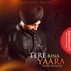Tere Bina Yaara song download by Sukhshinder Shinda