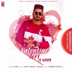 Valentine Teri song download by H MNY