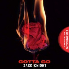 Gotta Go song download by Zack Knight