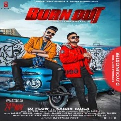 Burn Out song download by DJ Flow