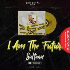 No Time Out song download by Sultaan