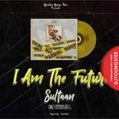 Mere Yaar song download by Sultaan