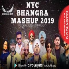 Bhangra Mashup 2019 song download by Dj Lishkara
