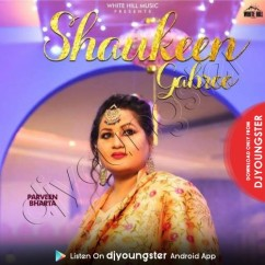 Shaukeen Gabroo song download by Parveen Bharta