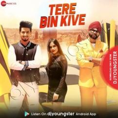 Tere Bin Kive song download by Ramji Gulati