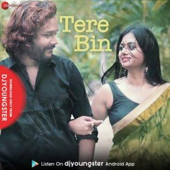 Tere Bin song download by Barenya Saha