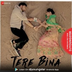 Tere Bina song download by Bismil