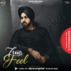 True Feel song download by Gurpartap