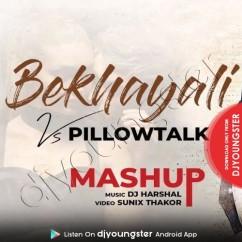 Bekhayali Pillowtalk Mashup song download by DJ Harshal